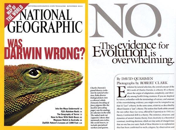 Evolution_not_wrong